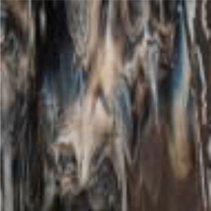2209-00 Dark Brown, White