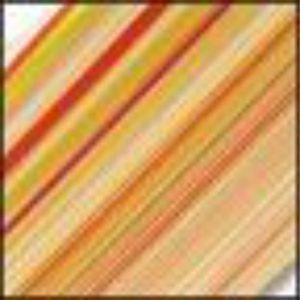 stripes 4561sf rio